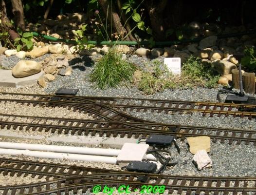 Gartenbahn_0031