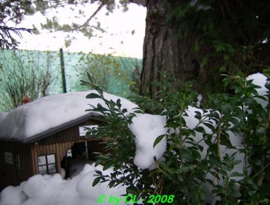 Gartenbahn_0135
