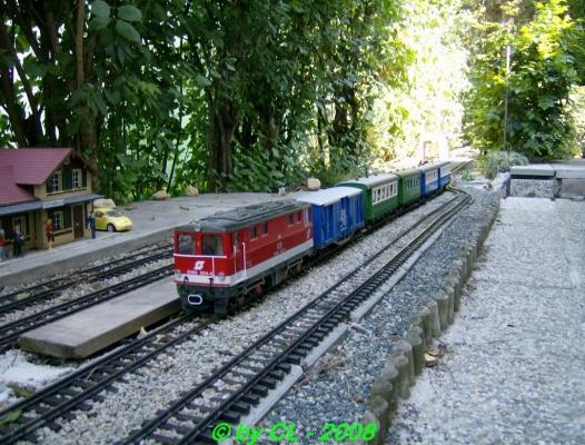 Gartenbahn_0091
