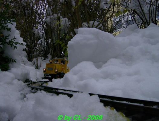 Gartenbahn_0131